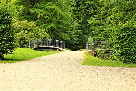 fotos gratis paisaje arbol cesped puente hoja