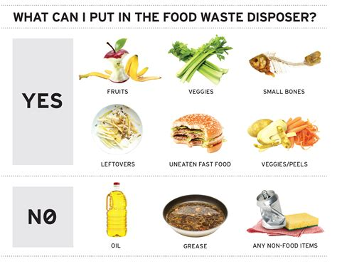 What Not To Put In A Garbage Disposal  Insinkerator. Medical Front Office Assistant Resume. Resume Format For Mba Fresher. Qualifications In Resume. Resume For Assistant Teacher. Bank Clerk Resume Sample. Best Font To Use For A Resume. How To Write A Retail Resume With No Experience. Project Management Resume Samples Free