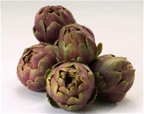 comment cuisiner les artichauts violets l 39 artichaut violet