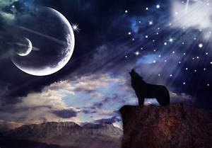 pics of wolves howling at the moon | Wolf Howling At The ...