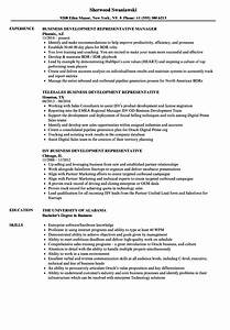 Representative Business Development Resume Samples
