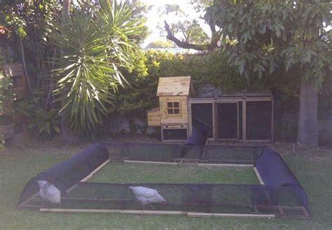 build  diy chicken tunnel   backyard