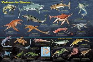 giant prehistoric fish - Google Search | Creatures ...