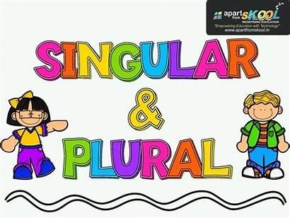 Plural Singular Nouns Quiz Quizizz English Tinytap