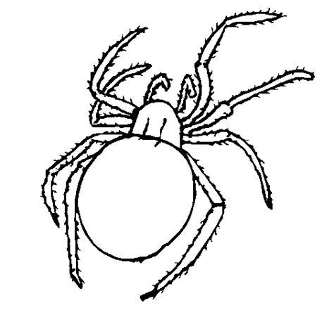imagenes de animales venenosos  pintar colorear imagenes