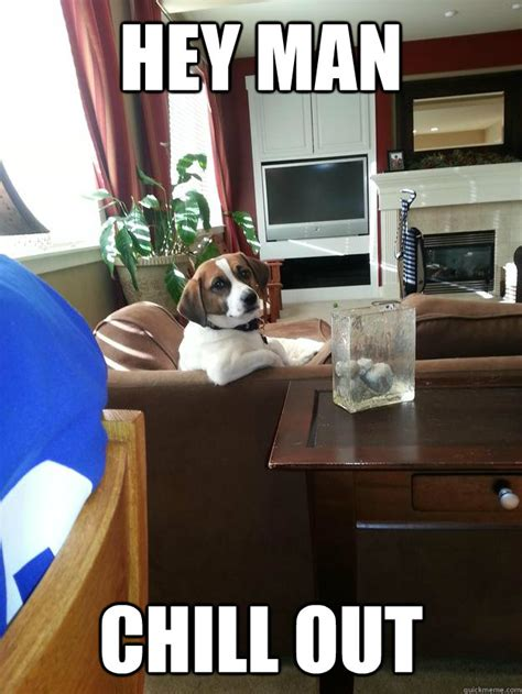 Chill Out Meme - hey man chill out casual mans best friend quickmeme