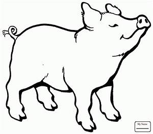 Pig Head Drawing at GetDrawings.com | Free for personal ...