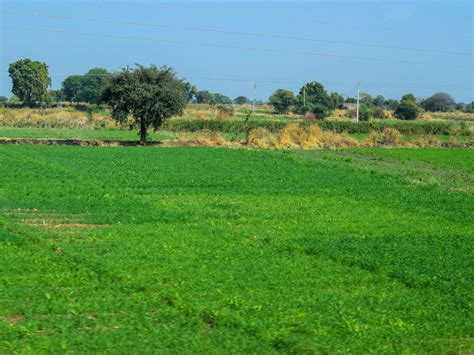 agricultural land - Free Indian Stock Pictures. Download ...