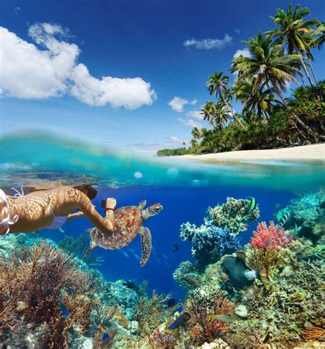 Best Dive Spots In The World the 57 best snorkeling spots in the world the snorkel store