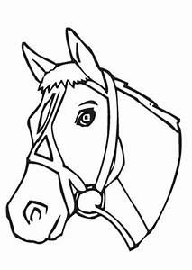 Niedliches Schnelles Pferd Ausmalbild Malvorlage Tiere