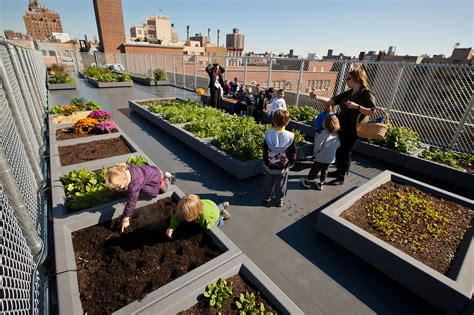 Garden School by Schools Add In House Farms As Teaching Tools In New York