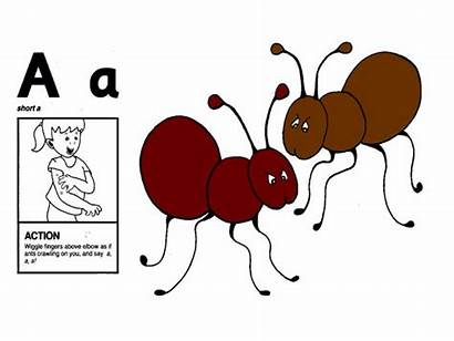 Phonics Jolly Ants Sounds Arm Letter Crawling