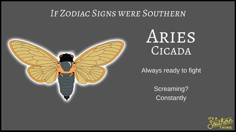 southern version  zodiac signs
