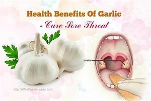 108 Beauty  U0026 Health Benefits Of Garlic  U2013 Its Uses  U0026 Side