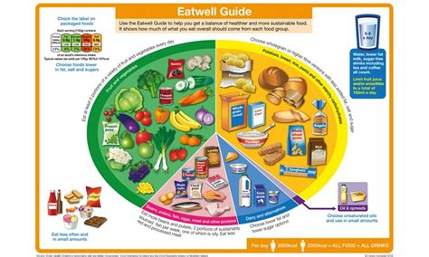 proportion cuisine eatwell guide food and nutrition nhs inform