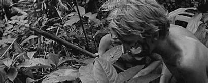 Jack Lord Appreciation Roger Flies Spamming Sorry