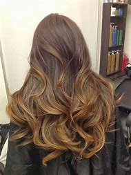 Honey Brown Hair Color with Highlights