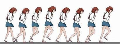 Animation Character Walking Walk Poses Cycle Development