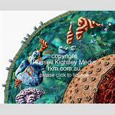 Messenger Rna Diagram | 500 x 403 jpeg 60kB