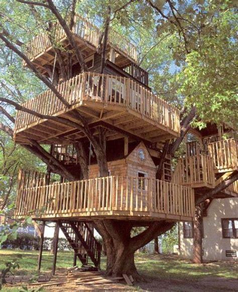 rachael caringella talkthetrees  dream house