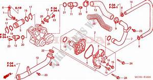 Honda Vtx 1800 Engine Diagram : water pump for honda vtx 1800 c 2008 honda motorcycles ~ A.2002-acura-tl-radio.info Haus und Dekorationen