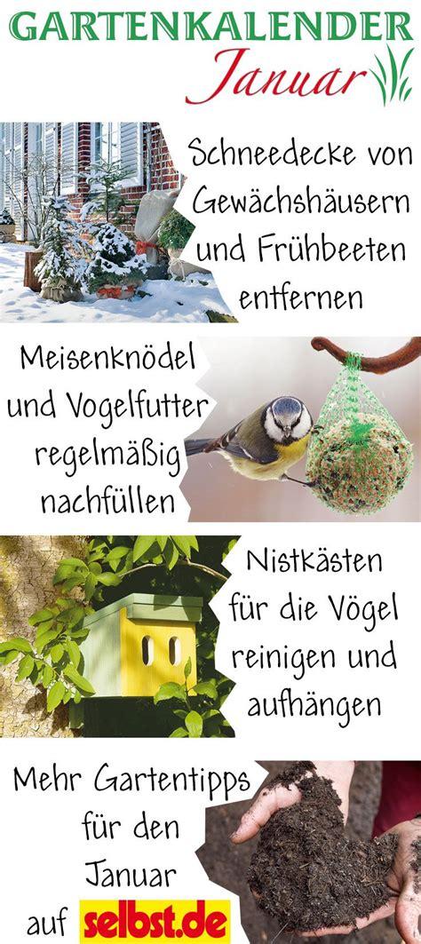 Garten Pflanzen Januar by Gartenkalender Januar Blumen Pflanzen Gem 252 Se