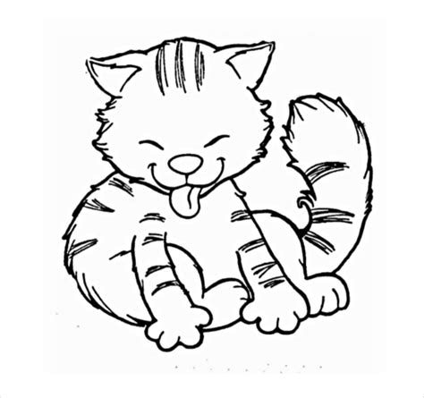 cat drawings template    documents format