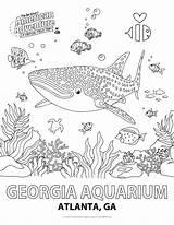 Aquarium Georgia Coloring Activity sketch template