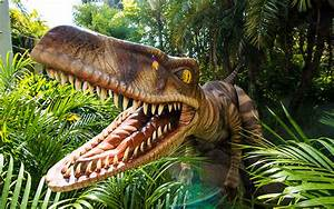 Universal Orlando Close Up | New Raptor Encounter ...