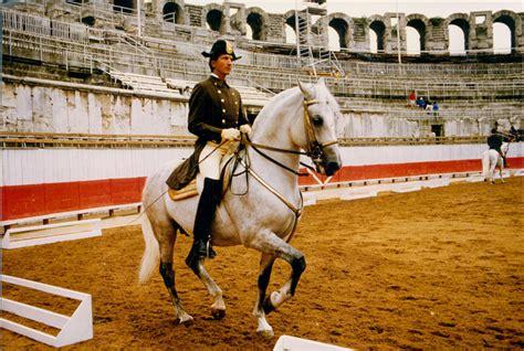kottas arthur riding heldenberg association british schools nov hofreitschule contessa ich wien