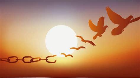 Çelësi i fjalëve të Kishës. Zbulesa, qielli i ri e toka e ...