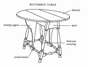 Diagram Of A Butterfly Table