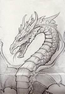 Best 25+ Dragon drawings ideas on Pinterest | Dragon art ...
