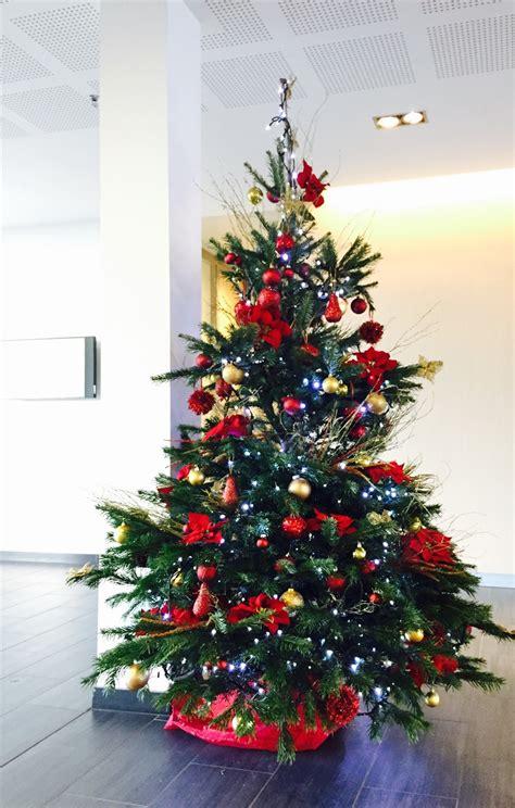 rent  christmas tree
