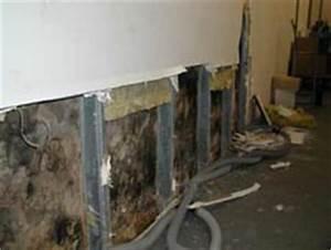Feuchtigkeit Wand Schimmel : folgesch den durch feuchtigkeit an den baustoffen ~ Sanjose-hotels-ca.com Haus und Dekorationen