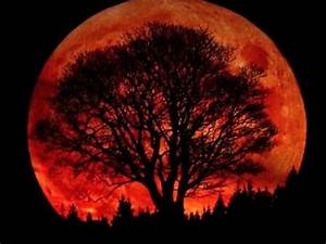 "Search Results for ""Blood Moons In 2014 2015"" – Calendar 2015"
