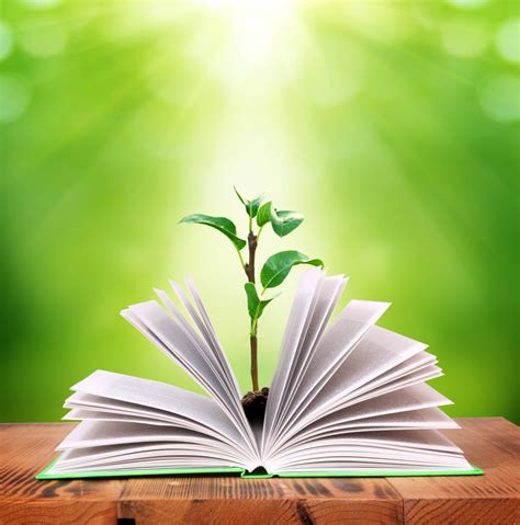 plant growing   book learning innolect