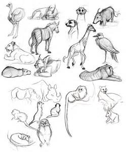 Easy Animal Drawings