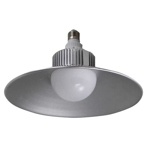 stonepoint led lighting 300w equivalent bright white g25
