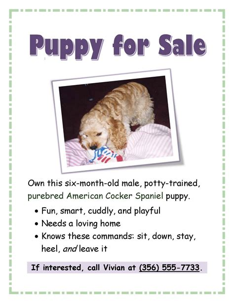 Puppy For Sale Flyer Templates by Cocker Spaniel Colors Pictures To