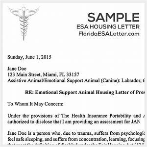 Emotional support dog sample letter cover letter samples for Florida emotional support dog letter
