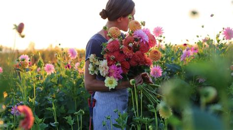 floral designers creating fresh   farm martha
