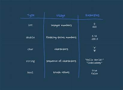 Data Types Basic Variables Cpp Examples Codecademy