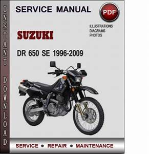 Suzuki Dr 650 Se 1996