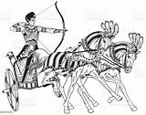 Chariot Egyptian War Ancient Egypt Pharaoh Horses Warrior Illustration Vector Adult Carrying Pulled Armed Animal Middle sketch template
