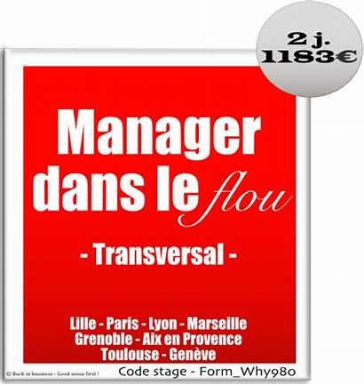 Transversal Flou Manager Dans Projet Management Sense