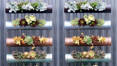 How To Grow An Edible Vertical Garden In Winter