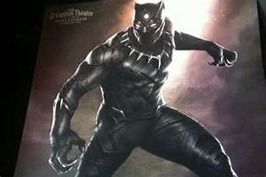 Marvel's 'Black Panther' Revealed in Ferocious First Look ...