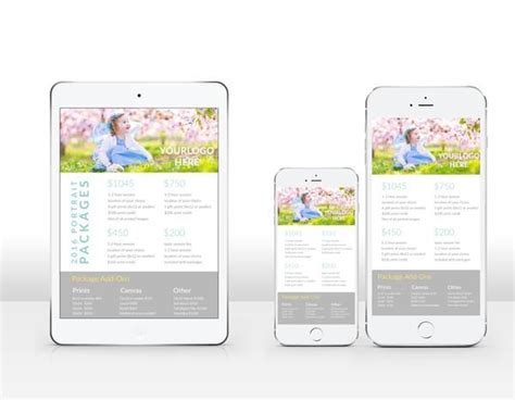 Product And Pricing Guide Accordion Psd Template For By Free Mobile Photographers Pricing Brochure