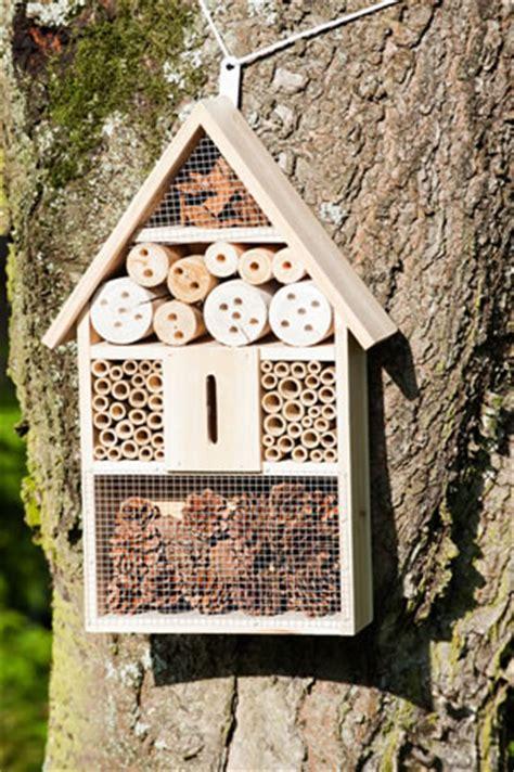 insektenhotel selber bauen mit kindern insektenhotel f 252 r n 252 tzlinge selber bauen